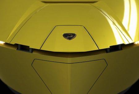 Впереди красуется значок Lamborghini.